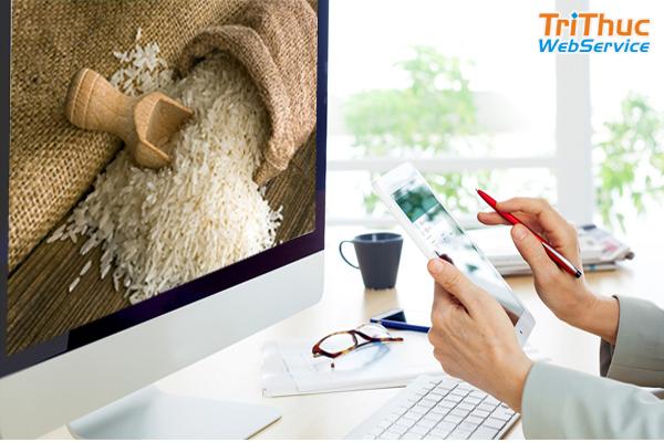 Thiết kế website bán gạo thu hút khách hàng tốt nhất